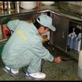 上海灭鼠公司&聚青臣灭鼠